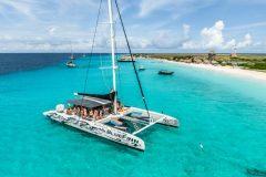 Catamaran-BlueFinn-side-far
