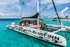Catamaran-BlueFinn-side